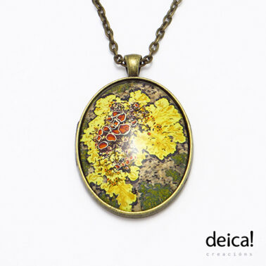 deica0121
